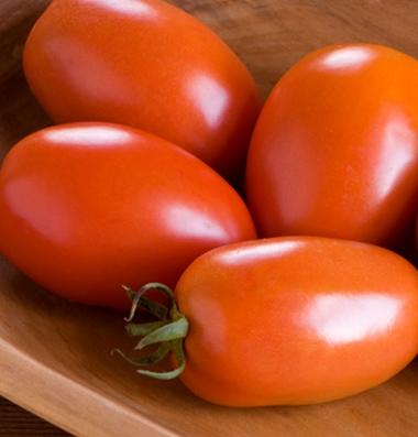 распродажа семян томатов amish paste seeds