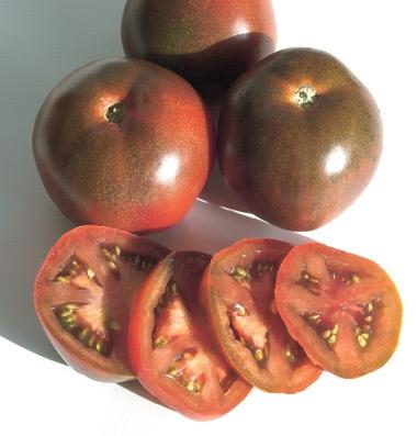 купить семена томата Black Prince seeds купить оптом