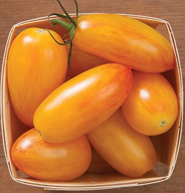 продам семена томатов Blush seeds