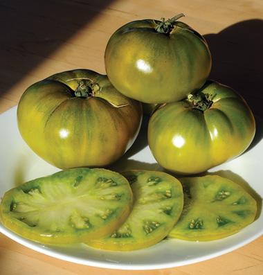 сортовые помидоры семена Cherokee Green seeds