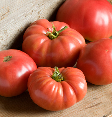 продам семена помидоров german johnson seeds