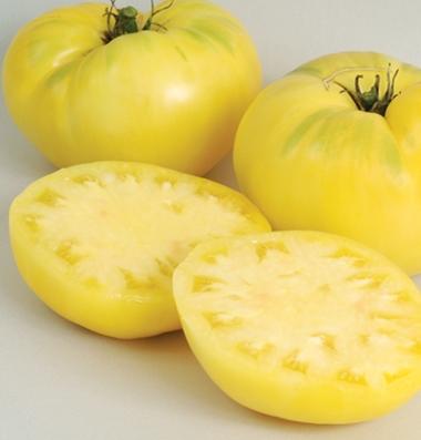 продажа семян томатов сорт Great White seeds
