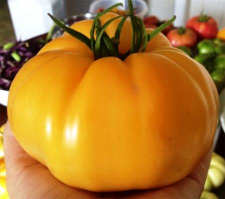 семена томата гавайский ананас hawaiian pineapple seeds всегда в продаже в москве