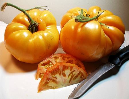 купить семена томатов лучшие сорта kelloggs breakfast seeds огромный каталог сортов помидор