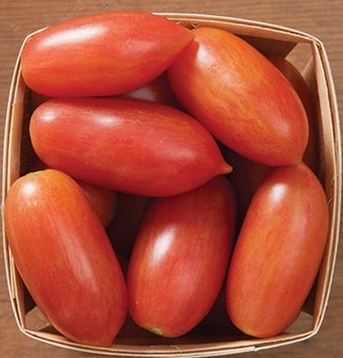 сомвестная закупка качественных семян томатов Pink Tiger seeds