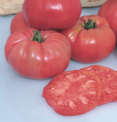 лучшие сорта помидор семена Pruden's Purple seeds