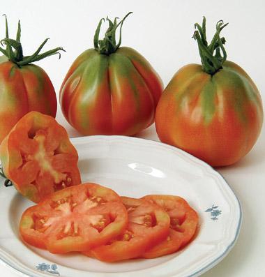 купить семена томатов сорт Red Pear Piriform seeds