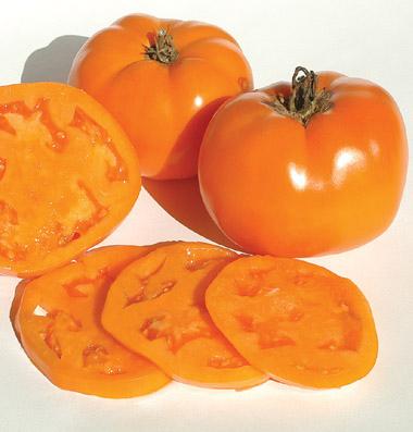 распродажа семян томатов валенсия valencia seeds